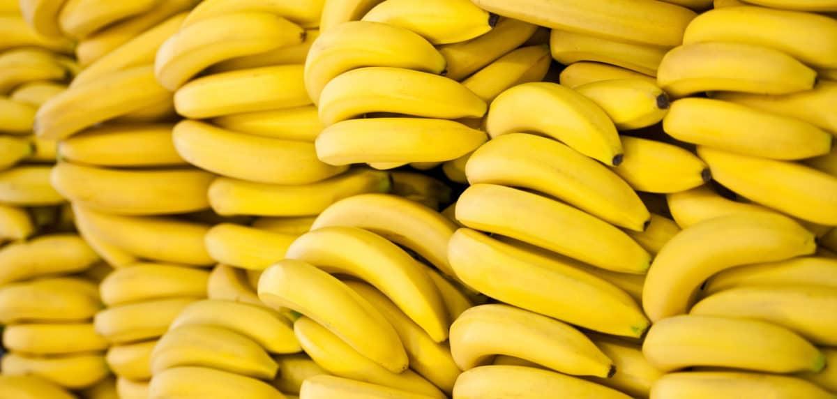 banan.jpg (.06 Kb)