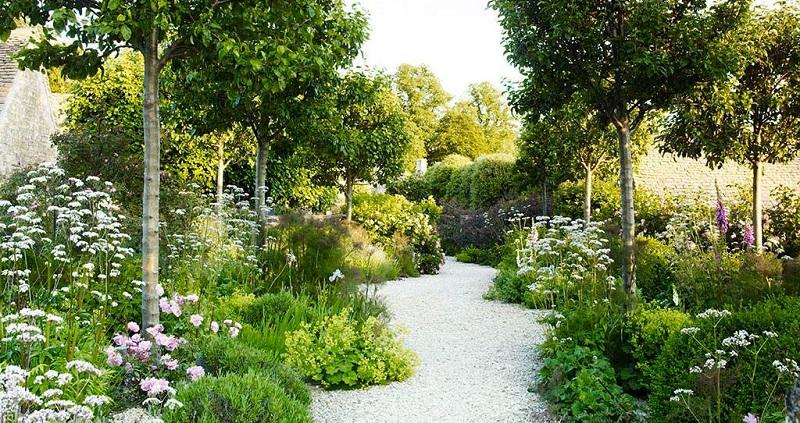 Білий сад наповнений романтикою і спокоєм. Ідеї
