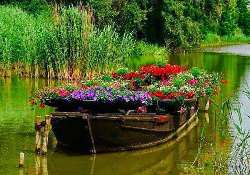 Квітники зі старих човнів