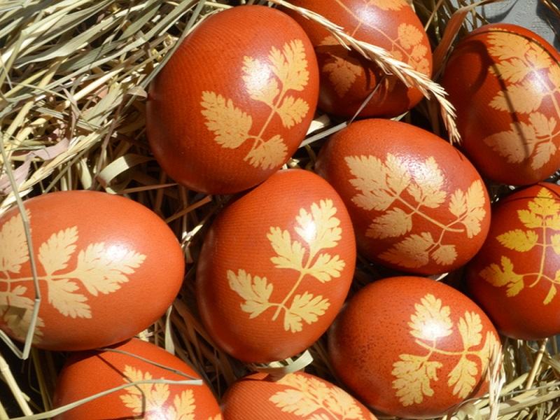 dekor_eggs_vizerynok_cubyla.jpg (214.03 Kb)
