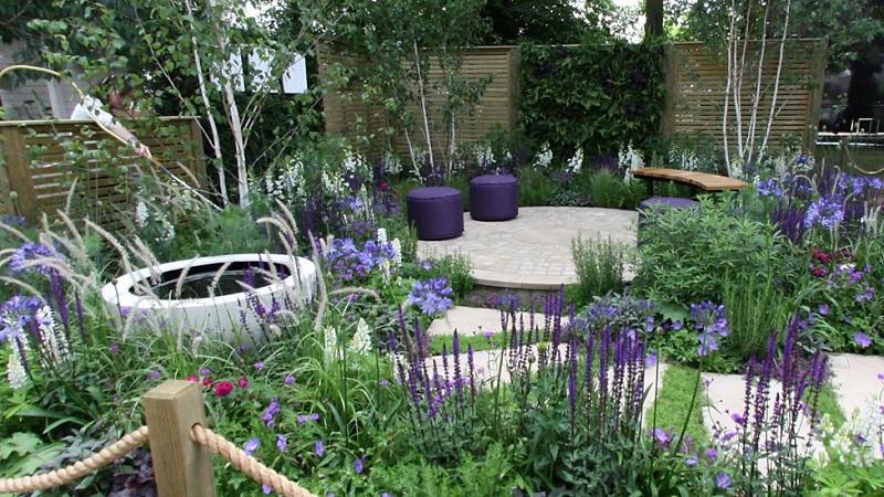 Фіолетовий сад. Ідеї