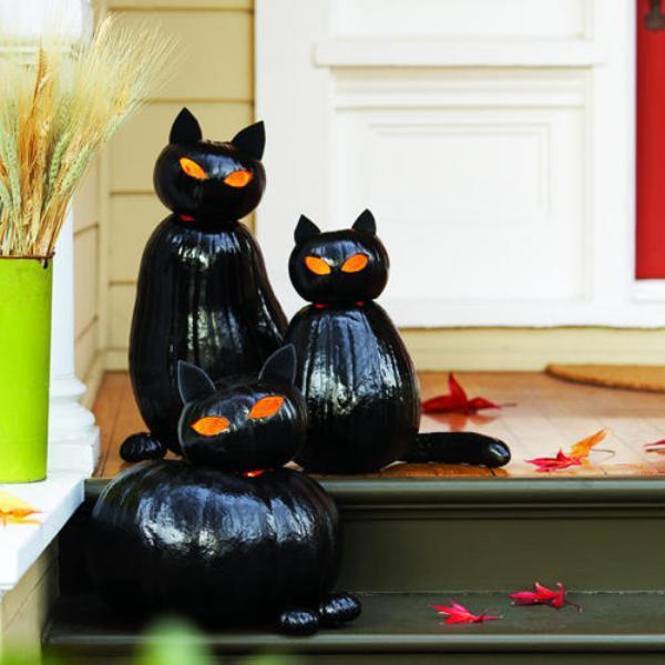 Чорна кішка на Halloween
