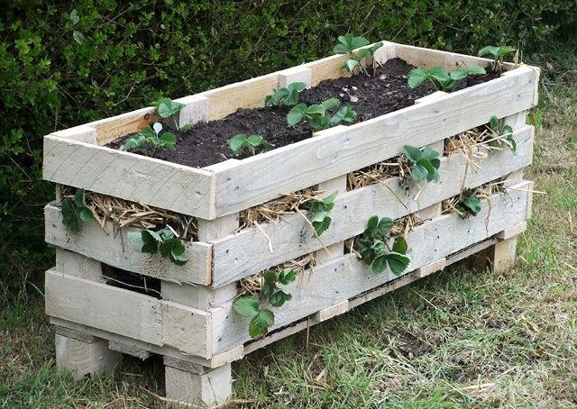 Дерев'яний контейнер для полуниці