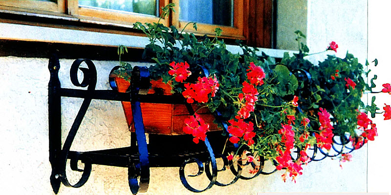 Корзина квітів за вікном
