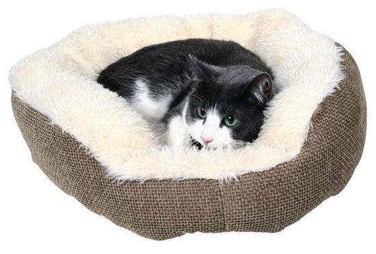 Як зробити ліжко для котика своїми руками?