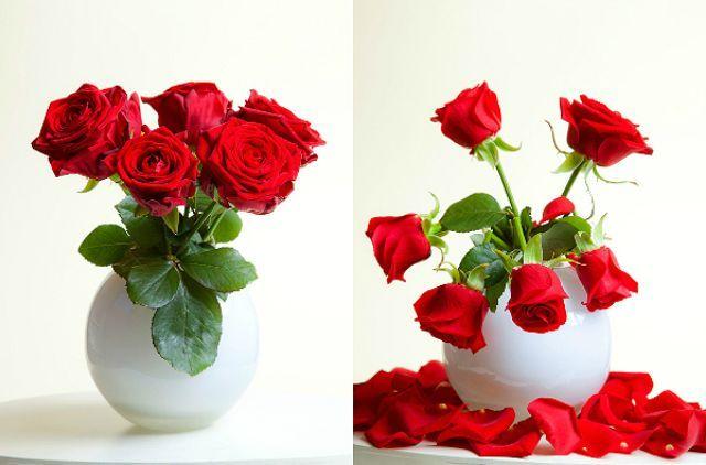 Що робити, щоб квіти в вазі стояли довше?