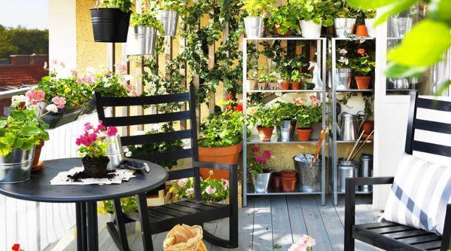 Створення квітника на балконі