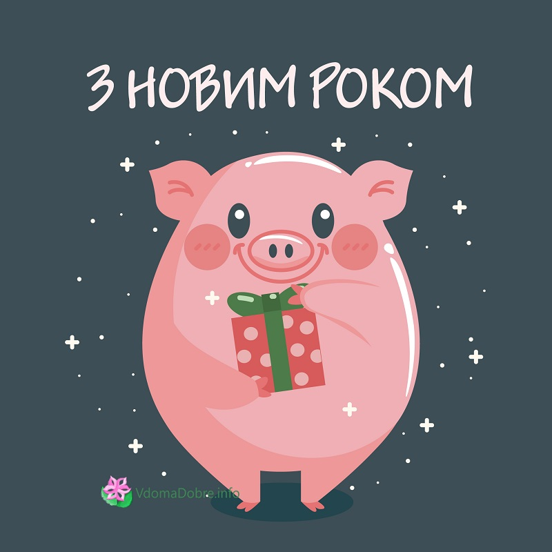 listivka_z_nr_2019_4.jpg (94.42 Kb)