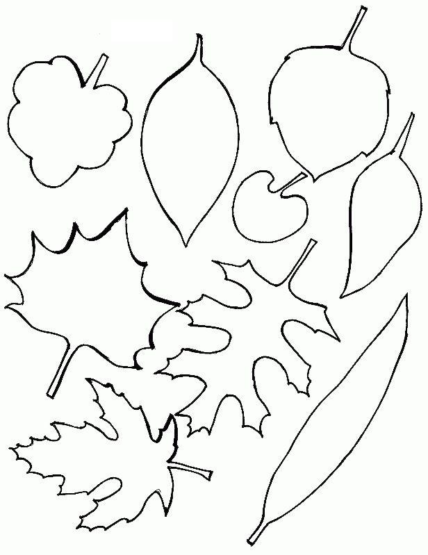Листья для открытки картинки шаблоны