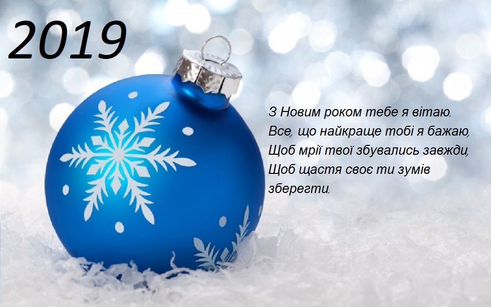 novorichna_listivka_2019__6.jpg (151.55 Kb)