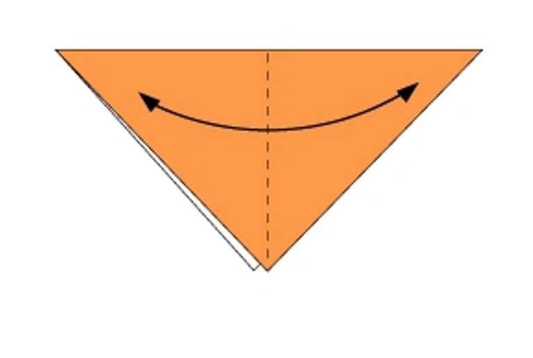 origami2.jpg (50.96 Kb)