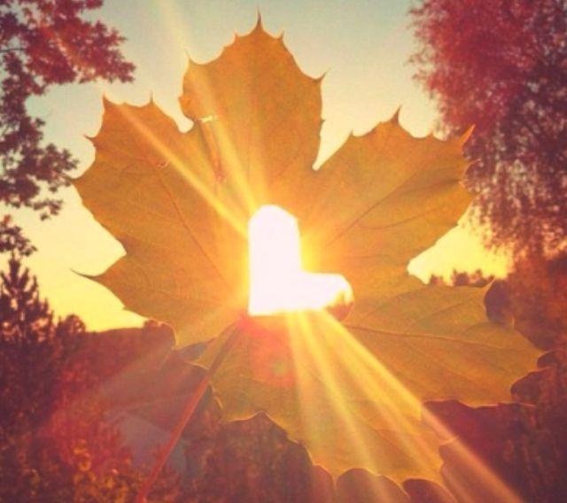 Чим зайнятися восени?