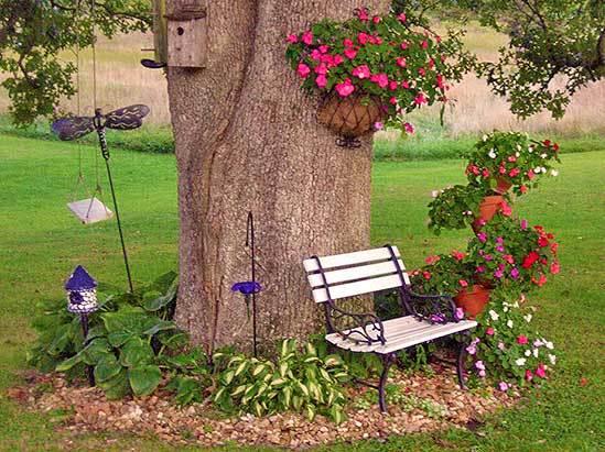 Клумба під деревом - ідеї оригінальних квітників