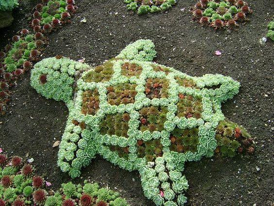 Фігурки із сукулентів - садовий декор