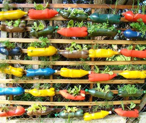 Вертикальний і горизонтальний сад з пластикових пляшок
