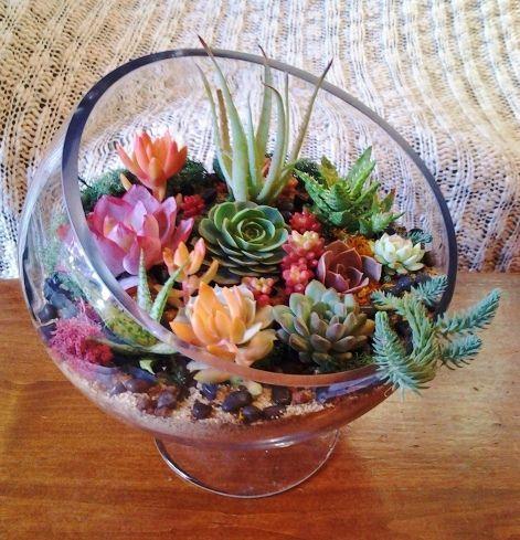 Квітковий тераріум - ідеї