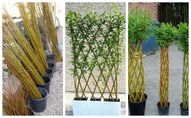 Елементи для саду з верби. Ідеї
